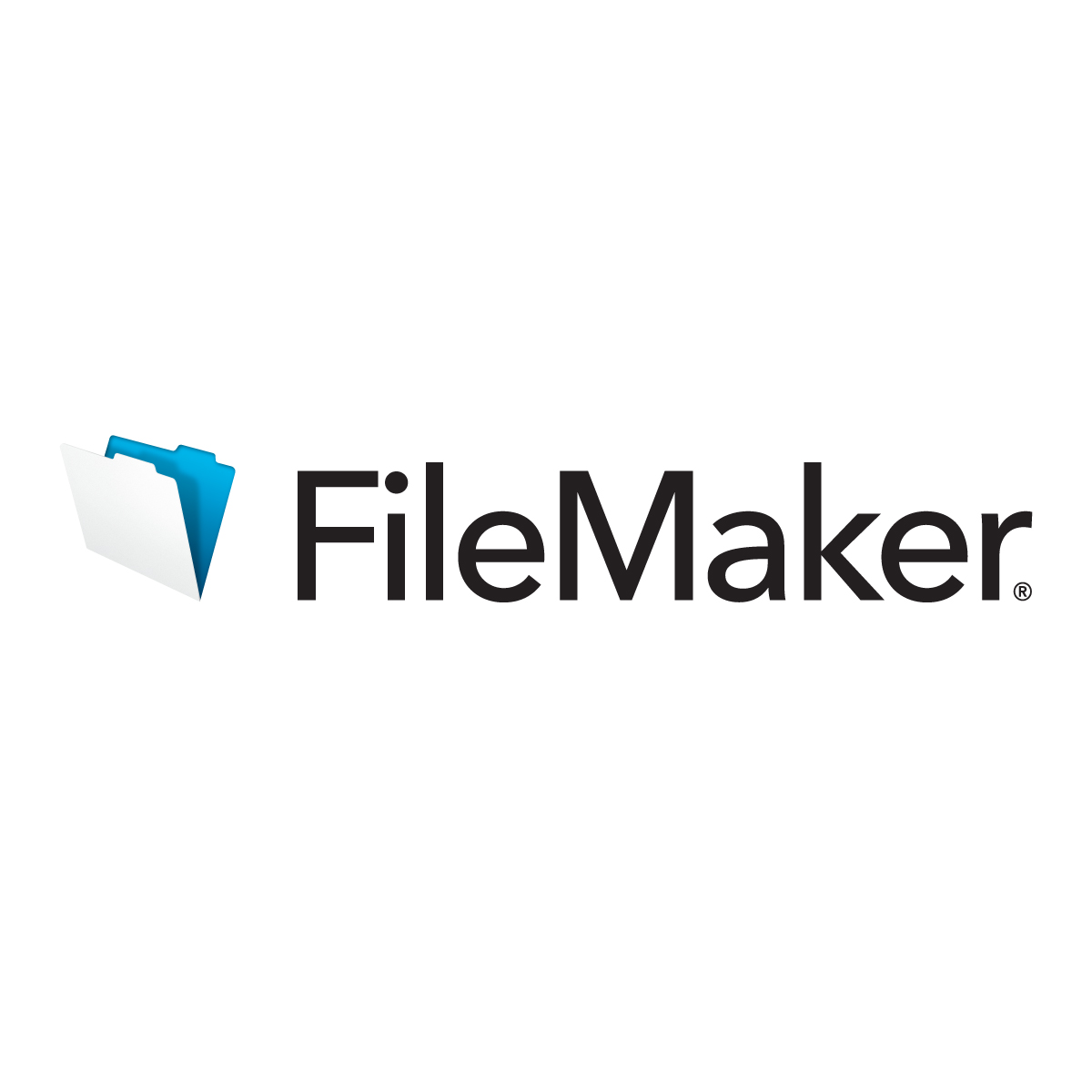 The FileMaker File